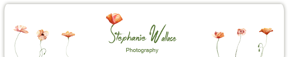 Stephanie Wallace Photography logo